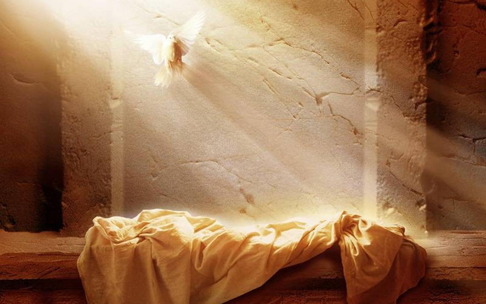 He is Risen sermon by Seth Johnson